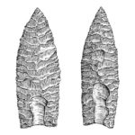 Hand drawn illustration of stone tools (Clovis Points)